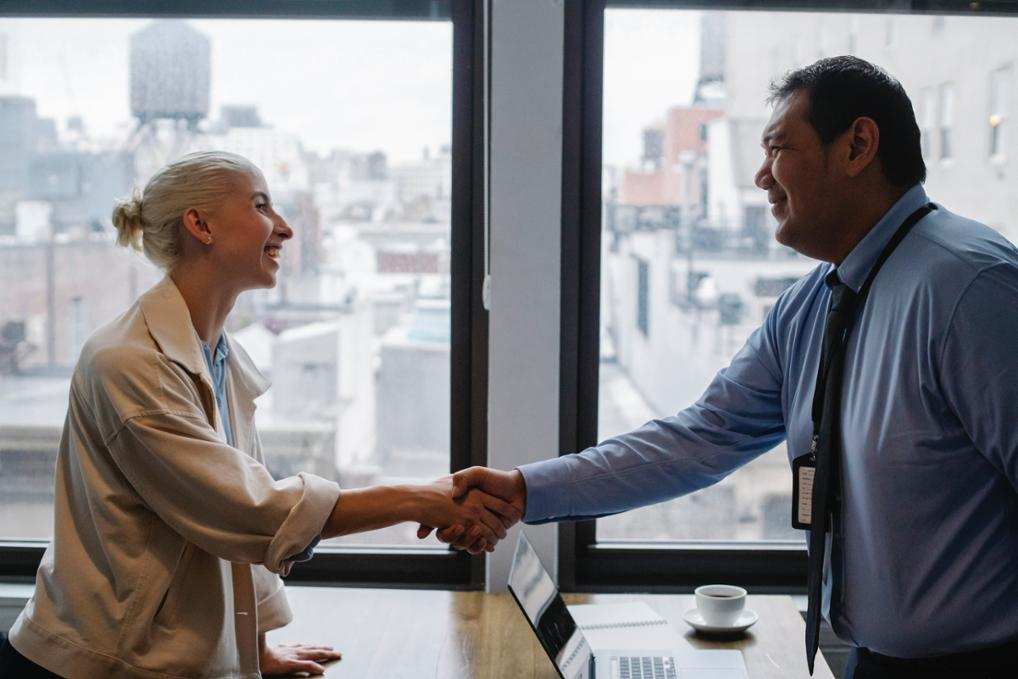 Interview shaking hands